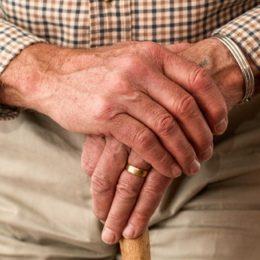 aged-cane-elder-33786-web-1024x683