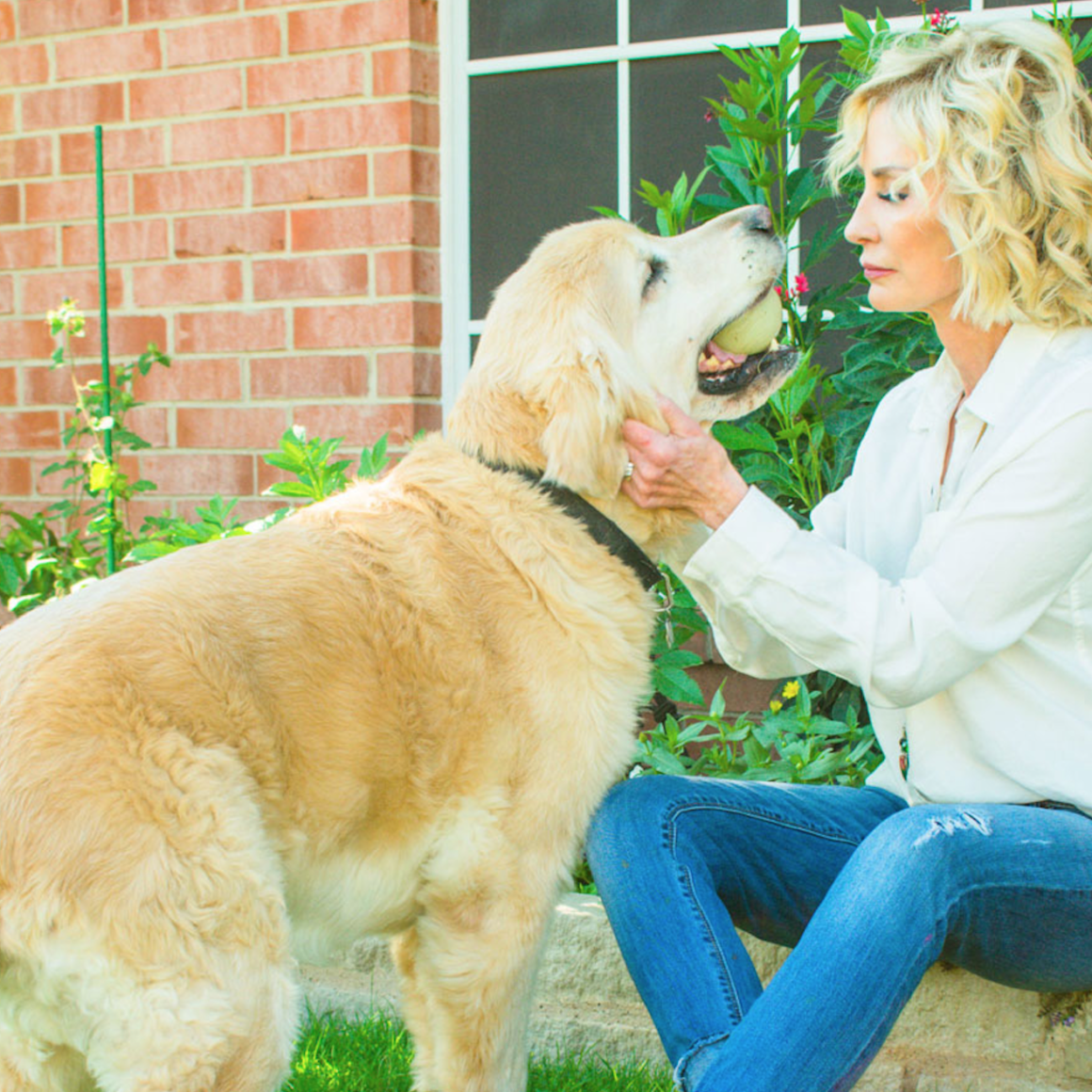 Becky Lennox - Pet Therapy