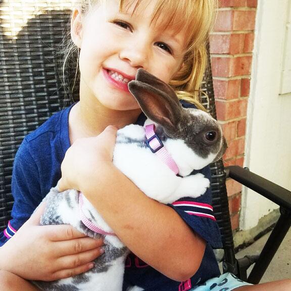 Charlie the Bunny